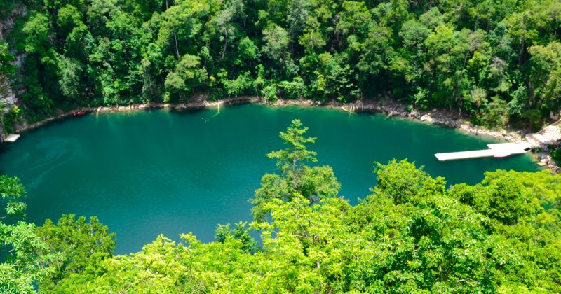 Cenotes Miguel Colorado
