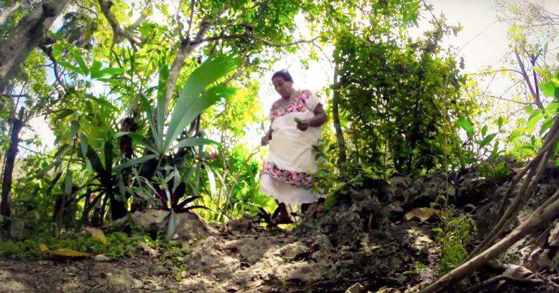 Señor, tradición maya y ecoturismo.
