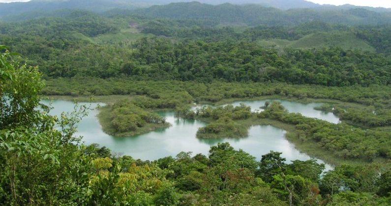 Área de Protección Metzabok, Chiapas