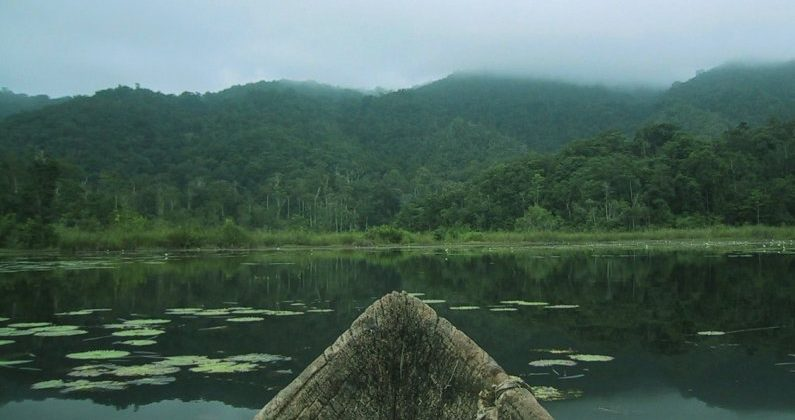 Área de Protección Nahá, Chiapas