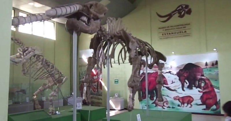 Museo de Paleontología y Arqueología, Guatemala