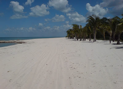 Playa Punta Chen, Campeche