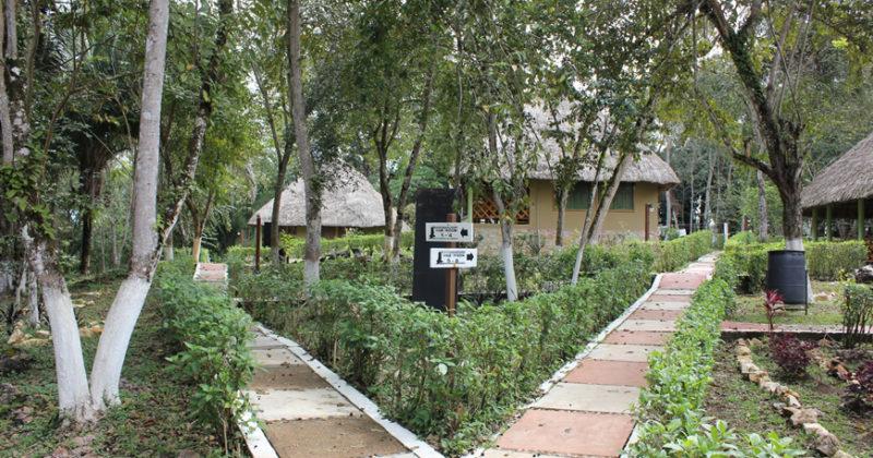 Centro Ecoturístico Indígena «Escudo Jaguar»